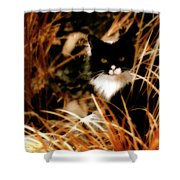 Cat In The Golden Grass Shower Curtain