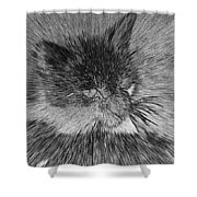 Cat - India Ink Effect Shower Curtain