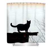Cat On A Tin Roof 2 Shower Curtain