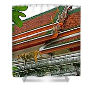 Cat On A Wat Po Roof In Bangkok-thailand Shower Curtain
