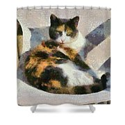 Cat On Chair Shower Curtain