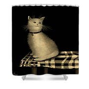 Cat On Checkered Tablecloth   No. 1 Shower Curtain