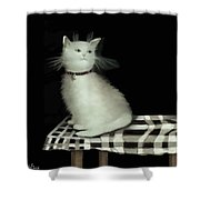 Cat On Checkered Tablecloth   No. 2 Shower Curtain