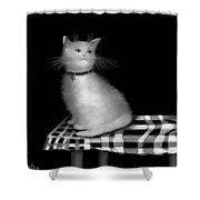 Cat On Checkered Tablecloth   No. 3 Shower Curtain