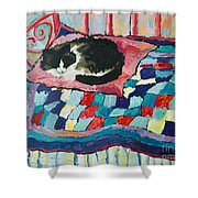 Cat On Pink  Shower Curtain