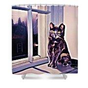 Cat On Window Sill Shower Curtain