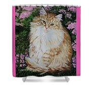 Kitten Cat Painting Perfect For Child's Room Art Shower Curtain