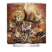 Cat Power Shower Curtain
