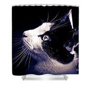 Cat Profile Shower Curtain