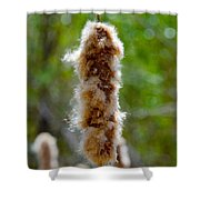Cat Tail Fuzz Shower Curtain