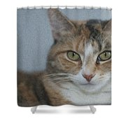Cat With Swirls Shower Curtain