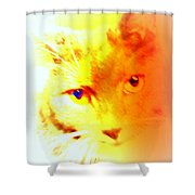 Fall In Love With The Cat Woman Shower Curtain by Hilde Widerberg