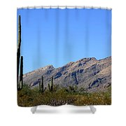 Catalinas Shower Curtain