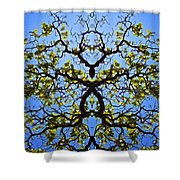 Catalpa Tree Shower Curtain