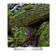 Cataracts Canyon Log And Streem Shower Curtain