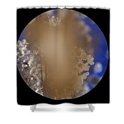 Cataracts, Patients View Shower Curtain