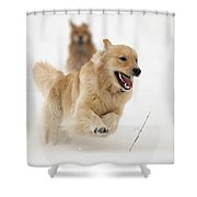 Catch Me If You Can Shower Curtain by Vic Harris