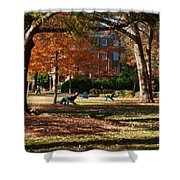 Catching Rays - Davidson College Shower Curtain