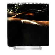 Catching Some Shade 17197 Shower Curtain