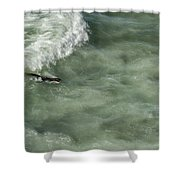 Catching The Wave Shower Curtain
