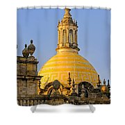 Catedral De Guadalajara Shower Curtain