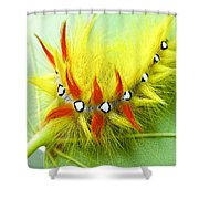 Caterpillar 2 Shower Curtain
