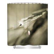 Caterpillar In Waiting Shower Curtain