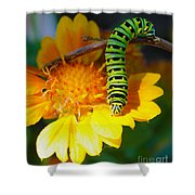 Caterpillar On The Prowl Shower Curtain