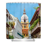 Cathedral And Balconies Shower Curtain