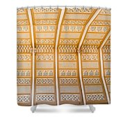 Cathedral Ceiling Shower Curtain