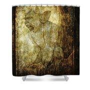 Cathedral Gargoyle Shower Curtain
