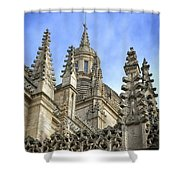 Cathedral Spires Shower Curtain