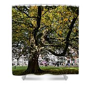 Cathedral Square - Exeter Shower Curtain