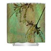 Catkins -- Tree-flowers Shower Curtain