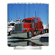 Catr3080-13 Shower Curtain
