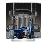 Catr3101a-13 Shower Curtain