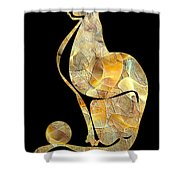 Cats 074-13 Marucii Shower Curtain