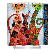 Cats 737 - Marucii Shower Curtain