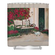 Cat Art Print On Canvas Oil Painting Hire Commission Pet Portrait Artist Shower Curtain