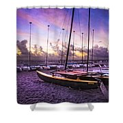 Cats At Dawn Shower Curtain