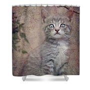Cat's Eyes #02 Shower Curtain