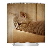 Cat's Eyes #03 Shower Curtain