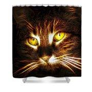 Cat's Eyes - Fractal Shower Curtain