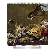 Cats Fighting In A Larder Shower Curtain