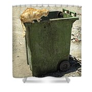 Cats On And In Garbage Container Shower Curtain