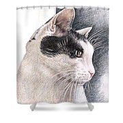 Cats View Shower Curtain
