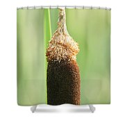 Cattail Face Shower Curtain