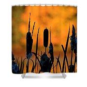 Cattail Silhouette Shower Curtain