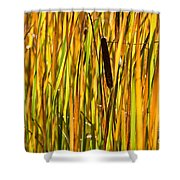 Cattails Aflame Shower Curtain
