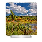 Cattails And Clouds Shower Curtain